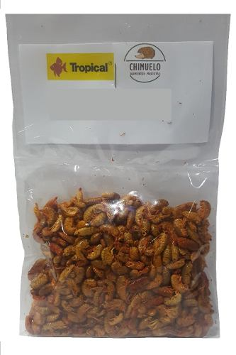 18-bolsas-de-pulgas-tortuga-tropical-envio-gratis-17-500