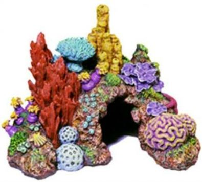 acuario-de-arrecife-de-ambientes-exoticos-vivos-del-caribe-32-599