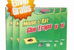 pack-24-trampas-ratones-pegajosa-entrga-stgo-teknotienda-15-000