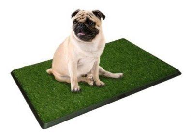 bano-ecologico-xxl-perros-gatos-pet-potty-tododescuento-9-990