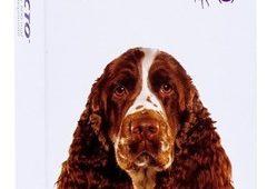 bravecto-antipulga-perro-10-20-kg-20-990