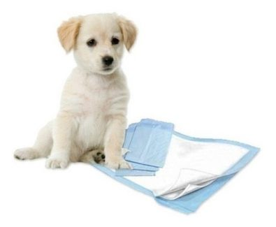 100-panales-tipo-sabanillas-mascotas-perros-30x40-cms-9-995
