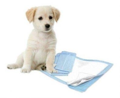 100-panales-tipo-sabanillas-mascotas-perros-45x60-cms-14-500