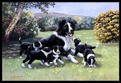 tesoros-de-la-caroline-bdba0257mat-border-collie-cachorro-57-530