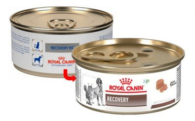 lata-royal-canin-recovery-perros-y-gatos-165gr-np-2-180