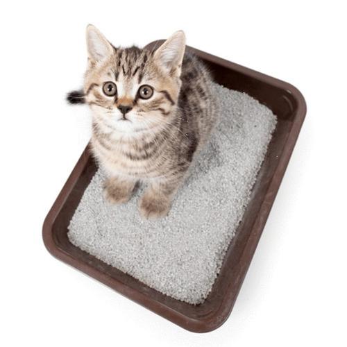arena-sanitaria-para-gatos-aglutinante-25kilos-19-500