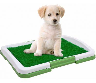 bano-perros-gatos-ecologico-grande-nuevo-60704-7-580