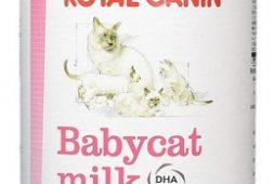 baby-cat-leche-royal-canin-300-gr-catdogshop-20-990