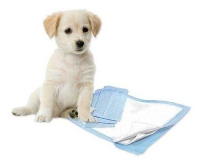 100-panales-tipo-sabanillas-mascotas-perros-30x40-cms-7-990